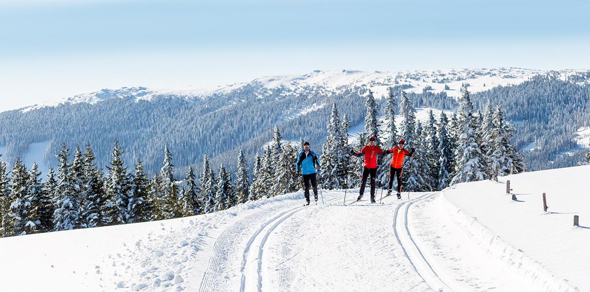 3 Langläufer unterwegs auf Rundloipe Steyersberger Schwaig mit Bergpanorama