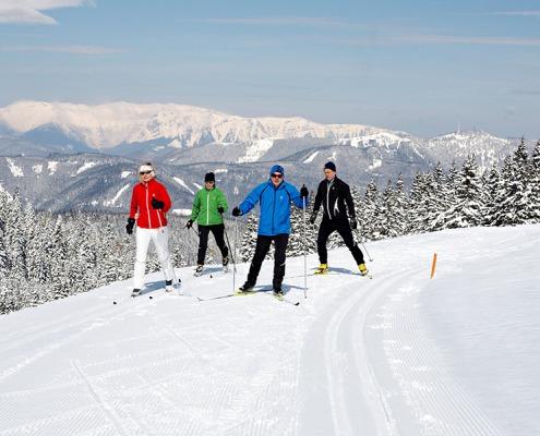 4 Personen auf der Rundloipe Steyersberger Schwaig mit verschneite Berggipfel im Hintergrund