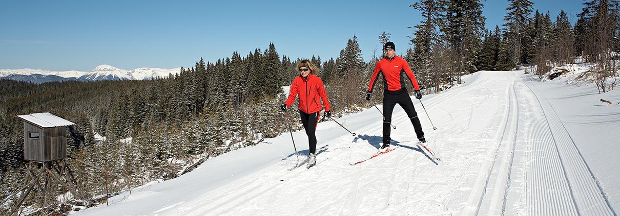 2 Langläufer auf der Rundloipe Steyersberger Schwaig