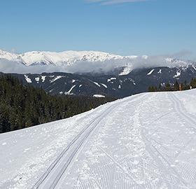 Foto der Rundloipe Feistritzsattel mit Blick auf die Berge