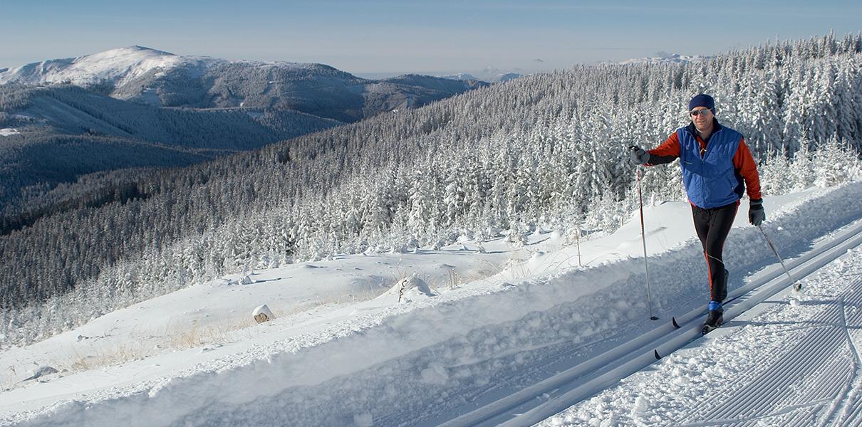 Langläufer auf dem Feistritzsattel mit verschneitem Wald im Hintergrund